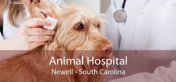 Animal Hospital Newell - South Carolina