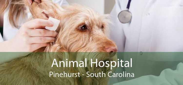 Animal Hospital Pinehurst - South Carolina