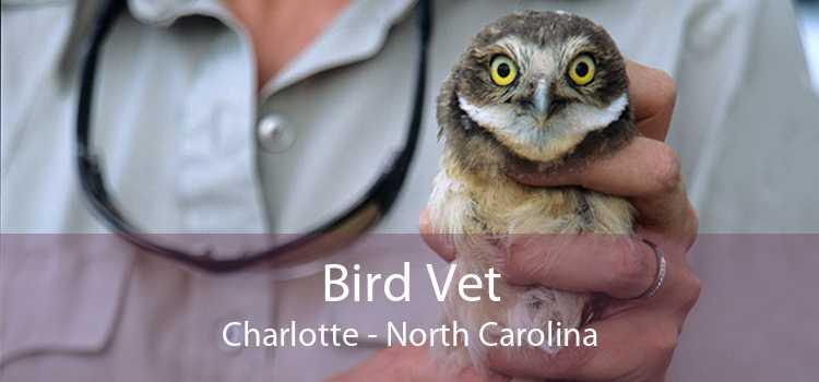 Bird Vet Charlotte - North Carolina