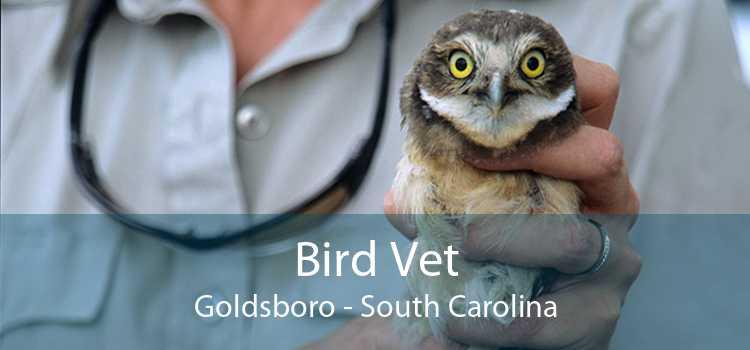 Bird Vet Goldsboro - South Carolina
