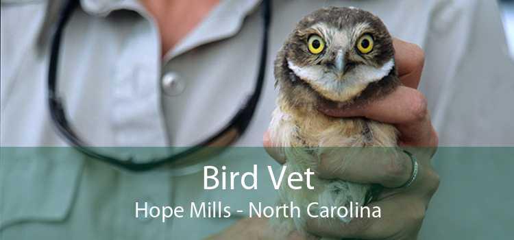 Bird Vet Hope Mills - North Carolina