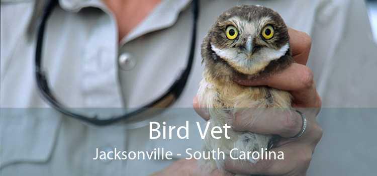 Bird Vet Jacksonville - South Carolina