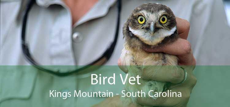 Bird Vet Kings Mountain - South Carolina