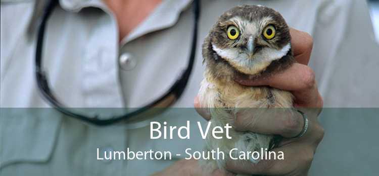 Bird Vet Lumberton - South Carolina