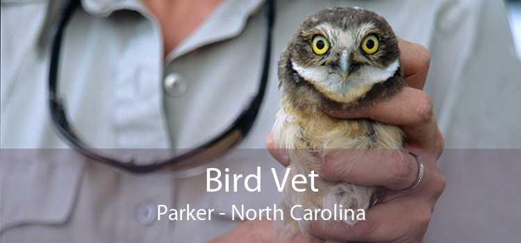 Bird Vet Parker - North Carolina
