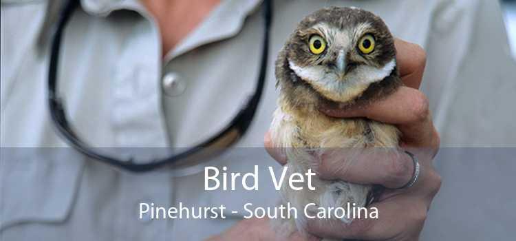 Bird Vet Pinehurst - South Carolina