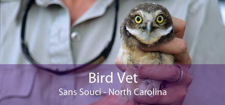 Bird Vet Sans Souci - North Carolina