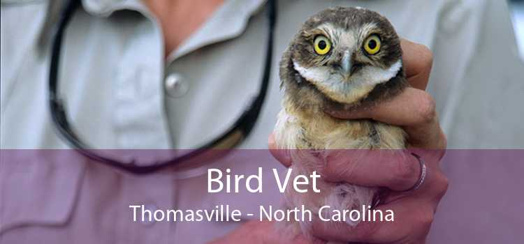 Bird Vet Thomasville - North Carolina