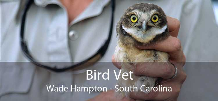 Bird Vet Wade Hampton - South Carolina