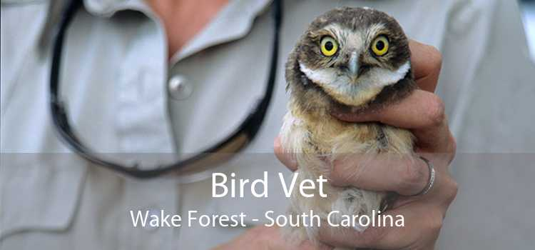 Bird Vet Wake Forest - South Carolina