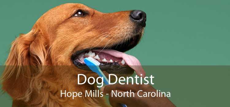 Dog Dentist Hope Mills - North Carolina