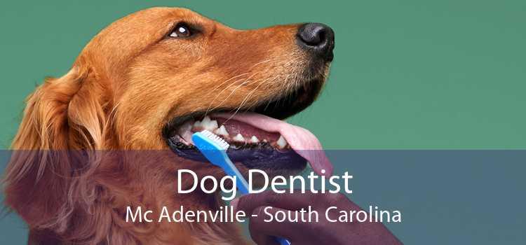 Dog Dentist Mc Adenville - South Carolina