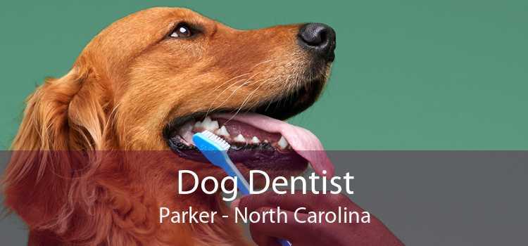 Dog Dentist Parker - North Carolina