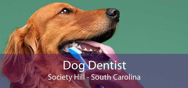 Dog Dentist Society Hill - South Carolina