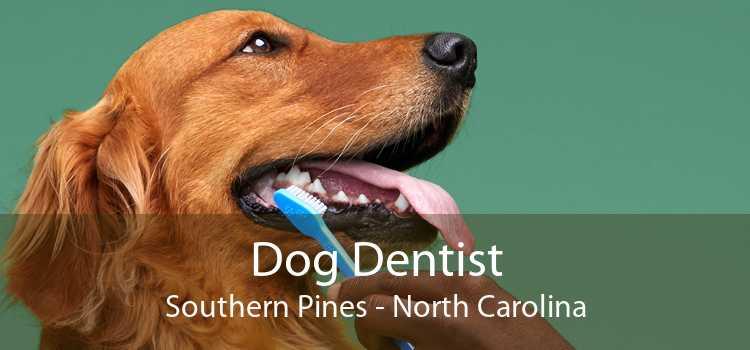 Dog Dentist Southern Pines - North Carolina