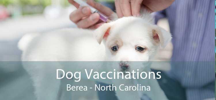 Dog Vaccinations Berea - North Carolina