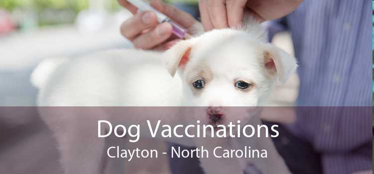 Dog Vaccinations Clayton - North Carolina