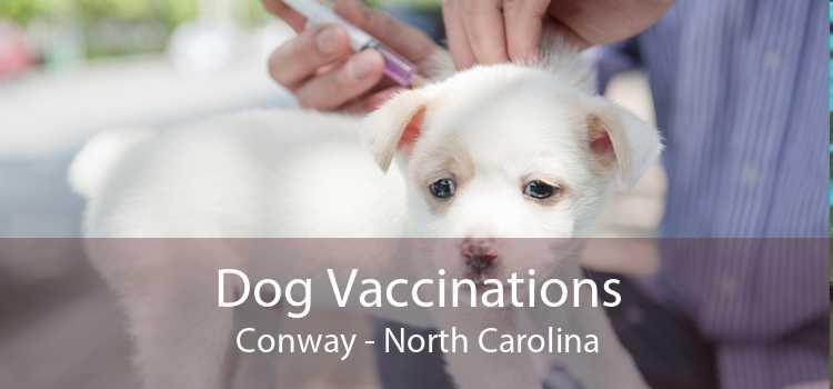 Dog Vaccinations Conway - North Carolina