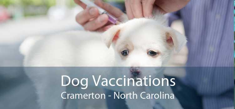 Dog Vaccinations Cramerton - North Carolina