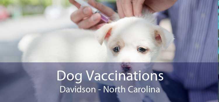 Dog Vaccinations Davidson - North Carolina