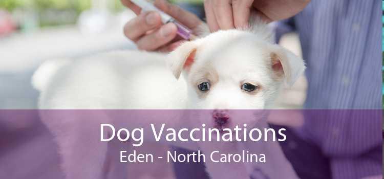 Dog Vaccinations Eden - North Carolina
