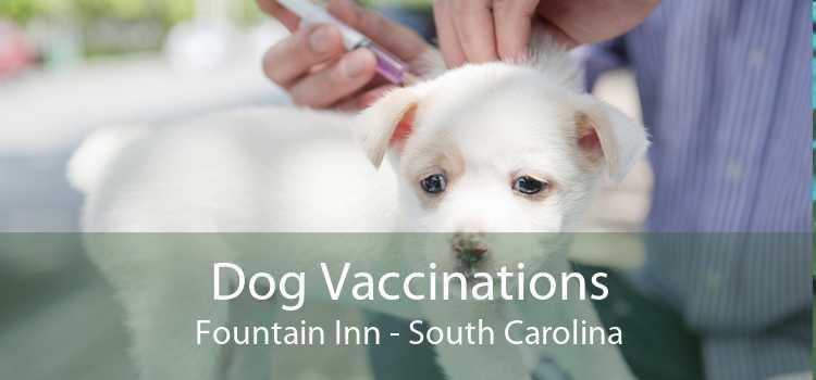 Dog Vaccinations Fountain Inn - South Carolina