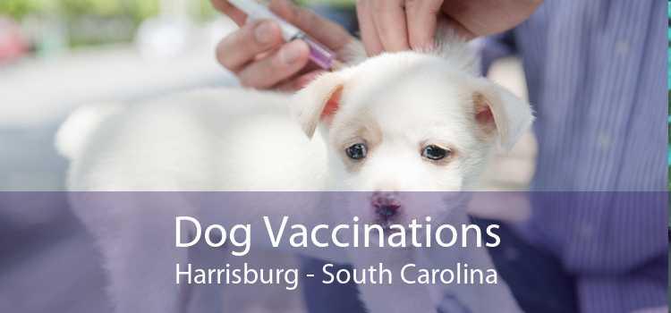 Dog Vaccinations Harrisburg - South Carolina