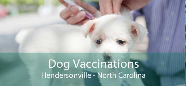 Dog Vaccinations Hendersonville - North Carolina