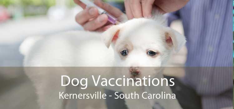 Dog Vaccinations Kernersville - South Carolina
