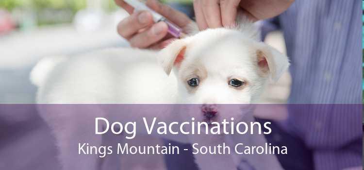 Dog Vaccinations Kings Mountain - South Carolina