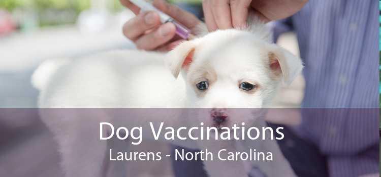Dog Vaccinations Laurens - North Carolina