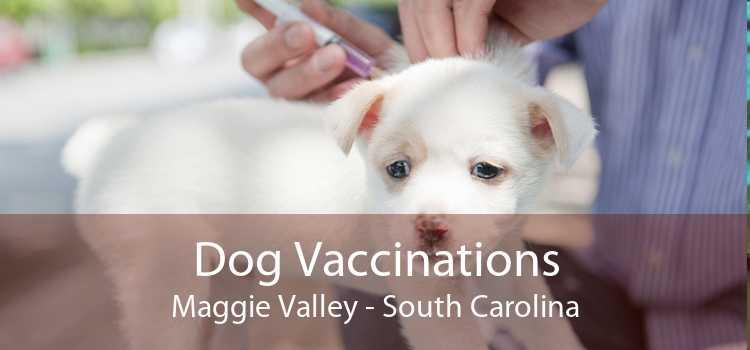Dog Vaccinations Maggie Valley - South Carolina