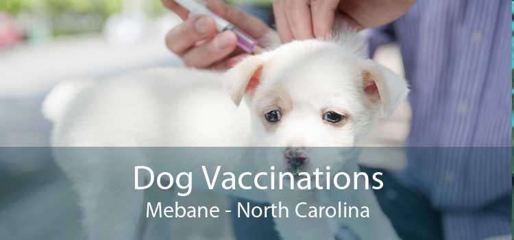 Dog Vaccinations Mebane - North Carolina