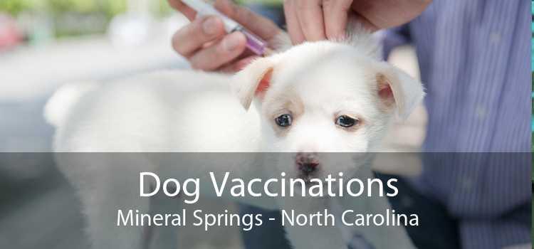 Dog Vaccinations Mineral Springs - North Carolina