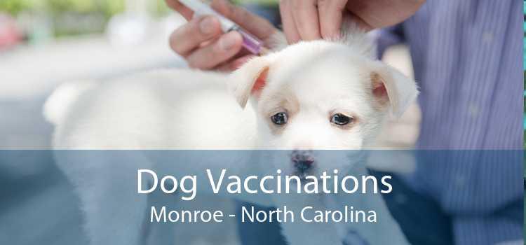 Dog Vaccinations Monroe - North Carolina
