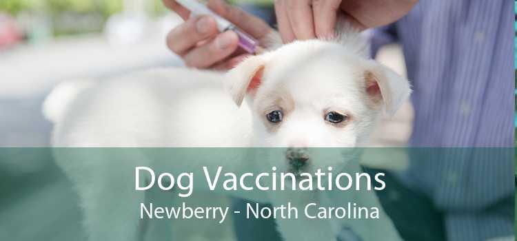 Dog Vaccinations Newberry - North Carolina