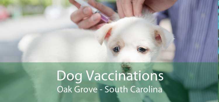 Dog Vaccinations Oak Grove - South Carolina