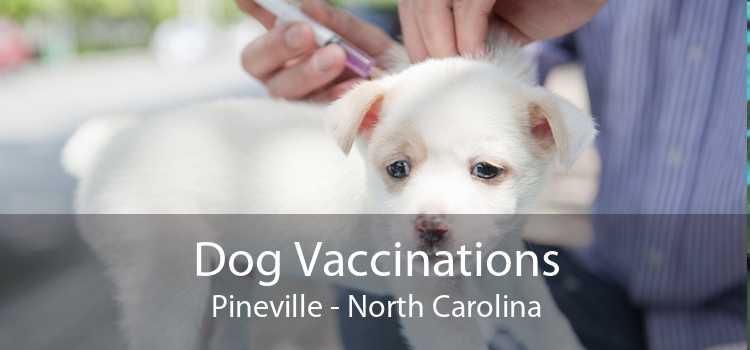 Dog Vaccinations Pineville - North Carolina