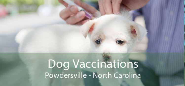 Dog Vaccinations Powdersville - North Carolina