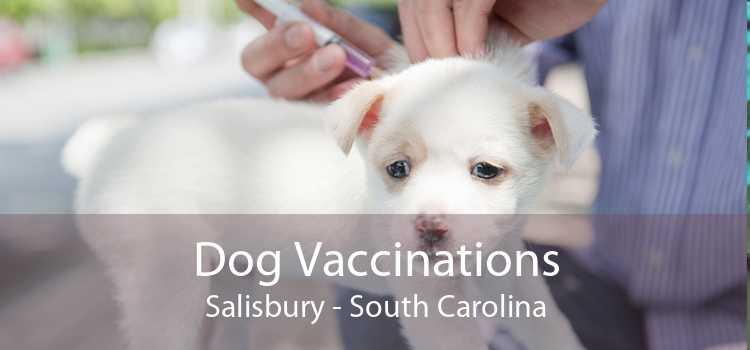 Dog Vaccinations Salisbury - South Carolina