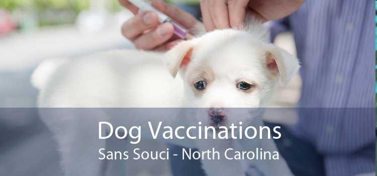 Dog Vaccinations Sans Souci - North Carolina
