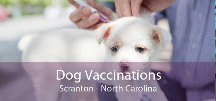 Dog Vaccinations Scranton - North Carolina