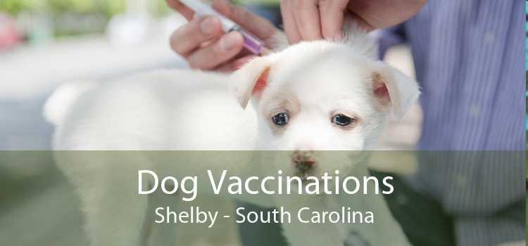Dog Vaccinations Shelby - South Carolina