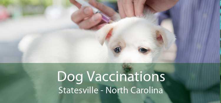 Dog Vaccinations Statesville - North Carolina