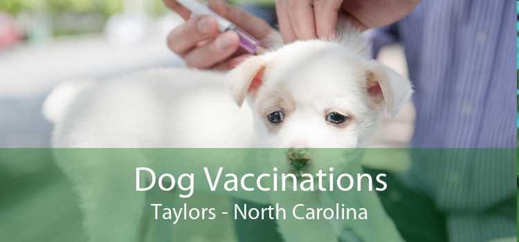 Dog Vaccinations Taylors - North Carolina