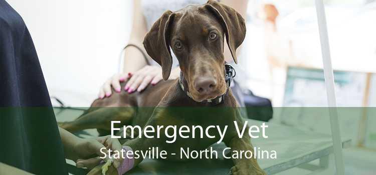 Emergency Vet Statesville - North Carolina