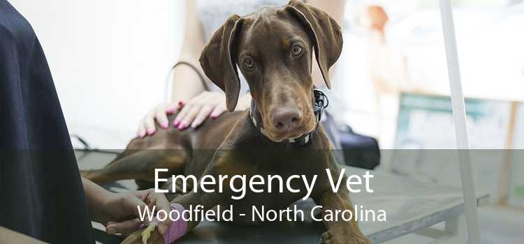 Emergency Vet Woodfield - North Carolina