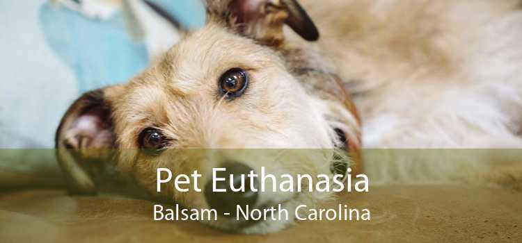 Pet Euthanasia Balsam - North Carolina