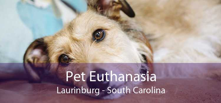 Pet Euthanasia Laurinburg - South Carolina