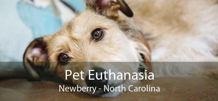 Pet Euthanasia Newberry - North Carolina